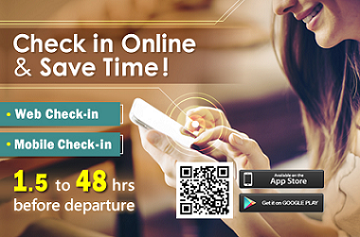 online check in banner